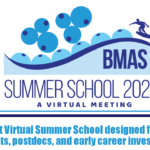 BMAS_SummerSchoolFlyer_horizontal_forWebsite